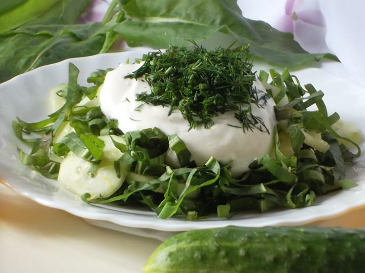 Салат из свежих огурцов и щавеля