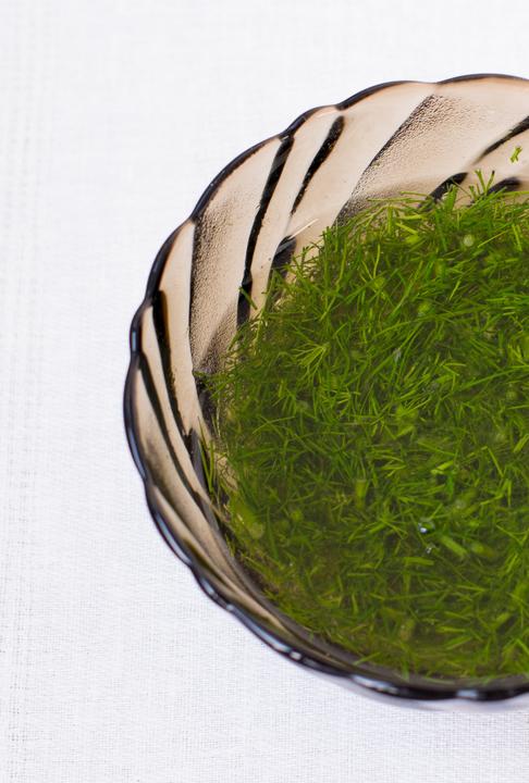 Салат из маринованных цуккини